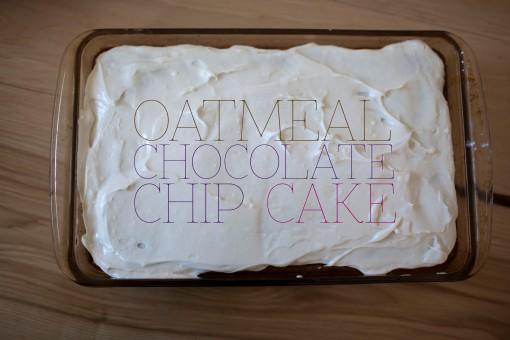 oatmealChocChipCake