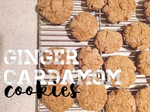 gignercookies.jpg